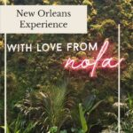 New Orleans Experience